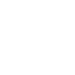 trelleborg-w
